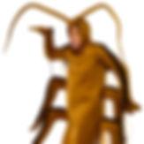 Cockroach Costume
