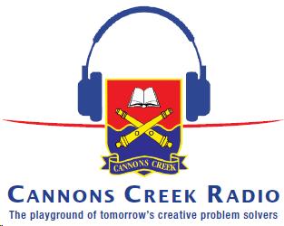 Cannons Creek Radio on SABC News!