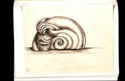 drawings journal entries 85