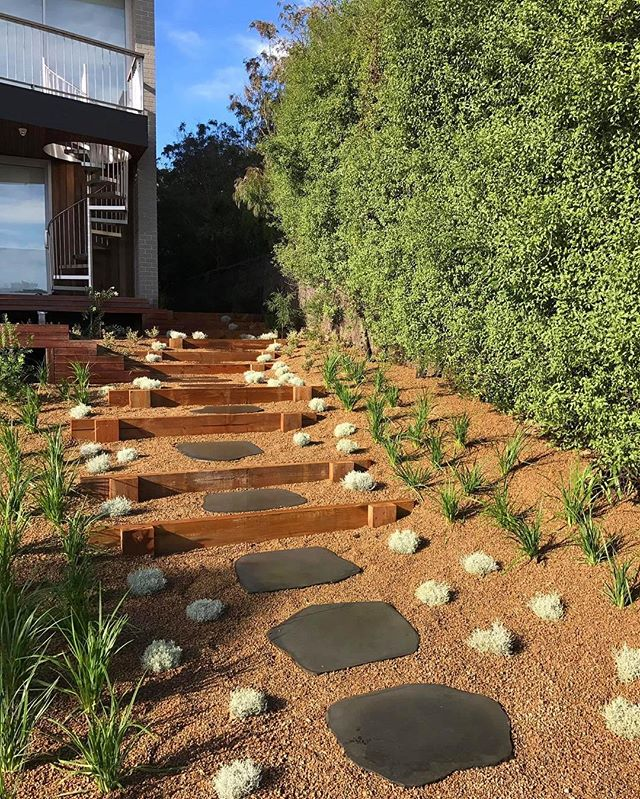 Bluestone Paving, Coastal plants
