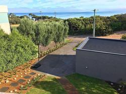 path, bluestone paving, coastal drought tolerant plants, sir Walter_
