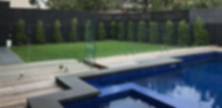 Beaumoris Pool landscaping- Spotted Gum Pool Decking, Bluestone Pool coping Pavers, Frameless Glass Pool Fence, Kikuyu Grass, Ficus hili Flash Plants