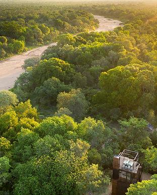 Ngala treehouse.jpg