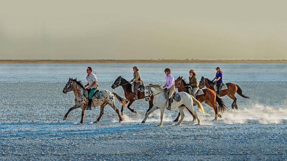 Horseback safaris.jpg