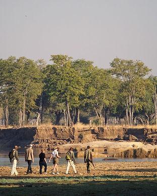 South Luangwa 4.jpeg