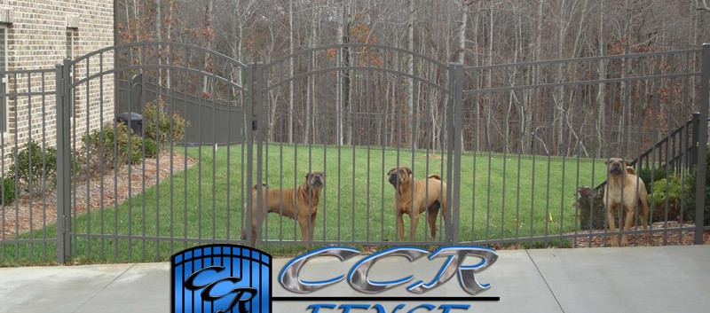 Aluminum-Fence-to-keep-dogs-inside.jpg