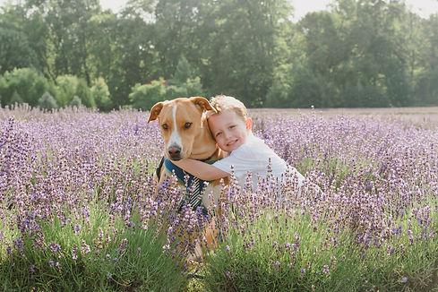Dutson_lavender_17.jpg