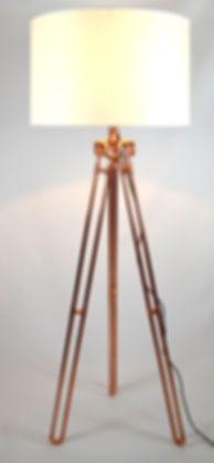 Dual-leg Copper Tripod Concept with Shad