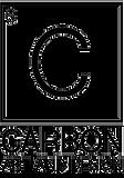 carbonlogotrans.png