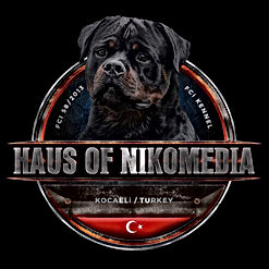 haus of nikomedia logo.jpeg
