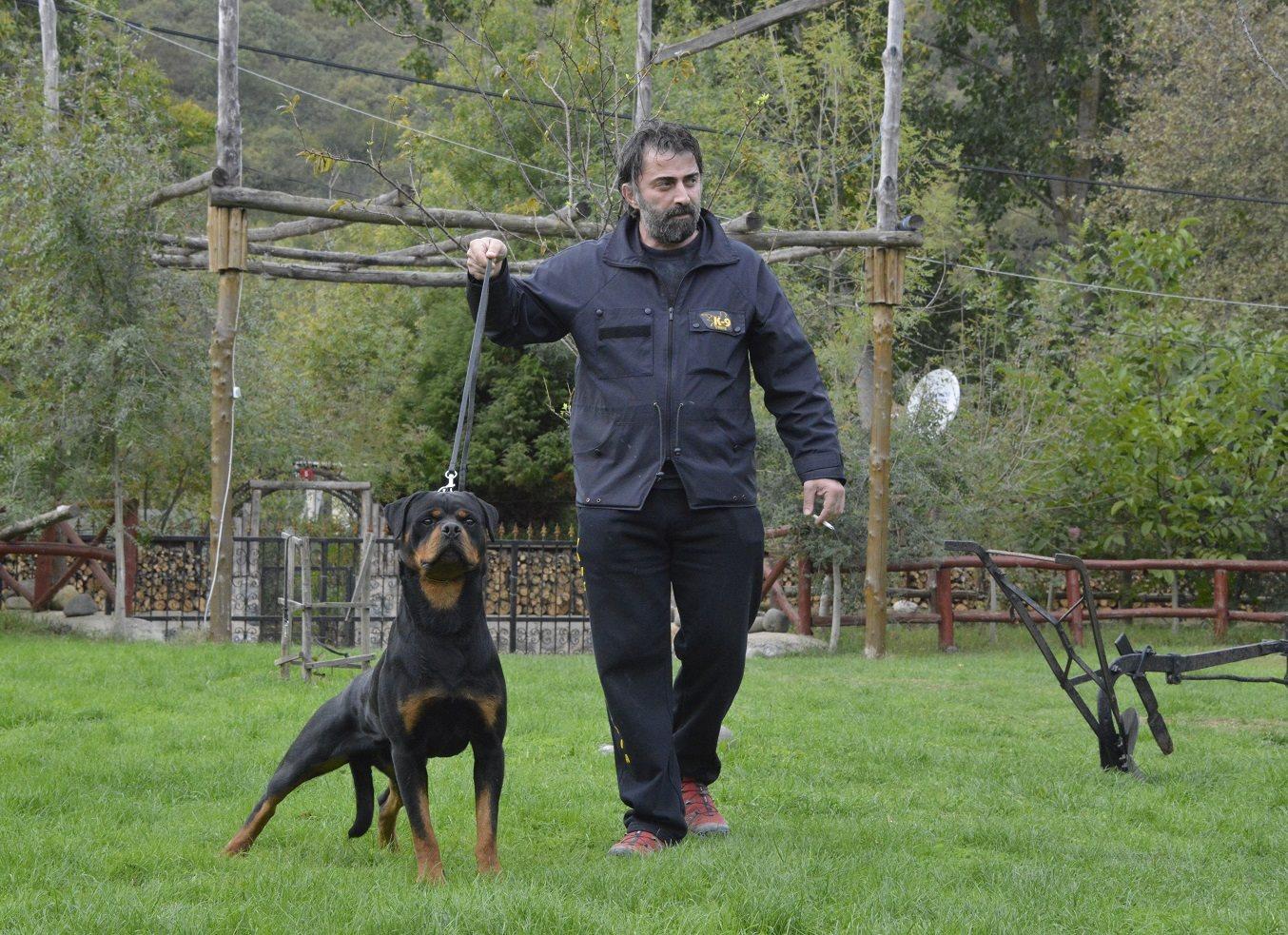 hunter ritter von camelot haus of nikomedia 5