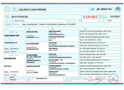 golden flash rouse (27)