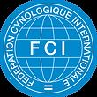 fcı vektorel logo.png
