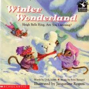 SMITH ROGERS: Winter Wonderland 9780590466578 SCHOLASTIC 1993