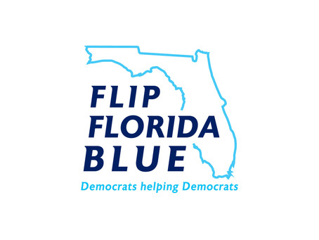 Flip Florida Blue: New website gives Democratic candidates running for office in Florida resources