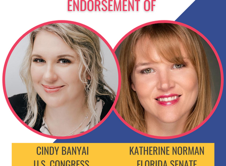 Katherine Norman and Cindy Banyai endorse each other for office