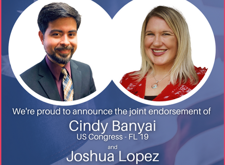 Dr. Cindy Banyai announces joint endorsements with three local Florida Democratic candidates