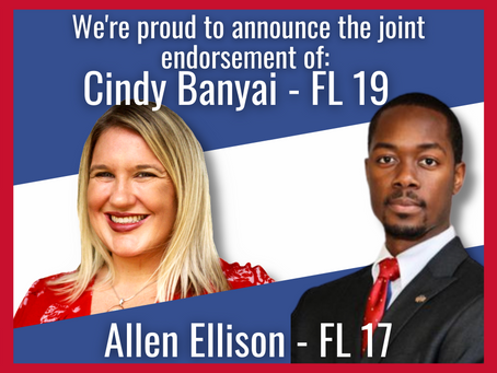 Cindy Banyai and Allen Ellison Endorse Each Other for Office