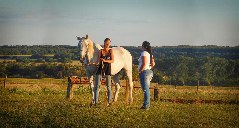 Egyéni lovas oktatás