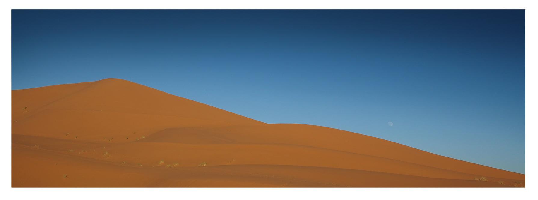 Dune Lune.jpg