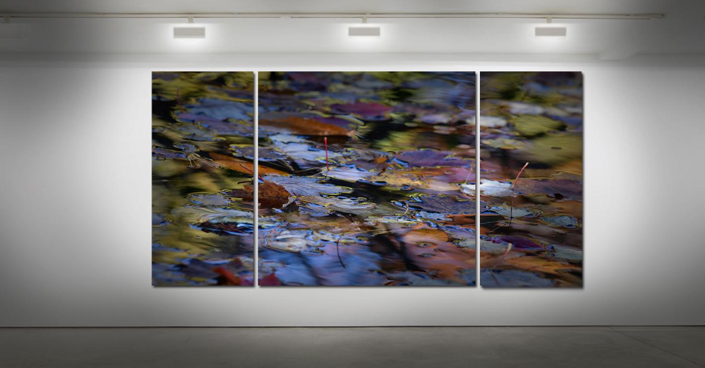 art photography, art print