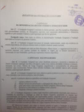 Estatuto Fundação Guignard (2) (2).png