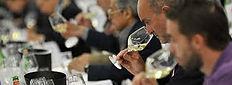 wine tasting competition.jpg