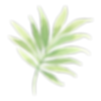 Folhas tropicais 2