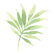 Tropische Bladeren 2
