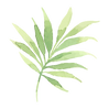 열대 잎 2