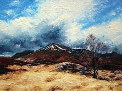 Edge of the Moor (Glencoe)