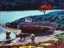 Shadows, Little Horseshoe Bay