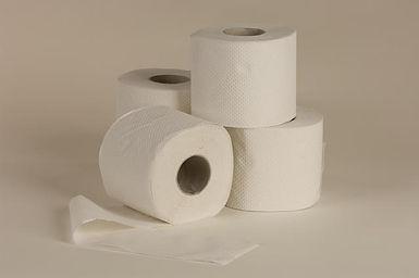 נייר טואלט 24 יחידות