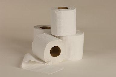 נייר טואלט 36 יחידות
