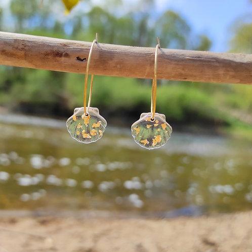Boucles d'oreilles coquillage transparent