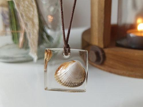 Pendentif collier Pureté Coquillage