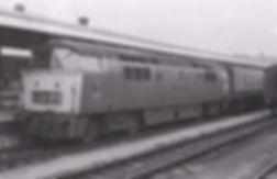D1037.jpg
