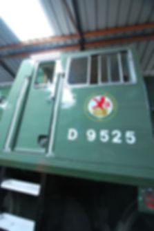 DSC_0296.JPG