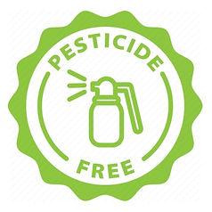 pesticide_edited_edited.jpg