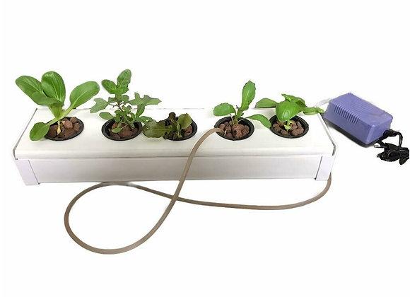NutriTube 5 Planter
