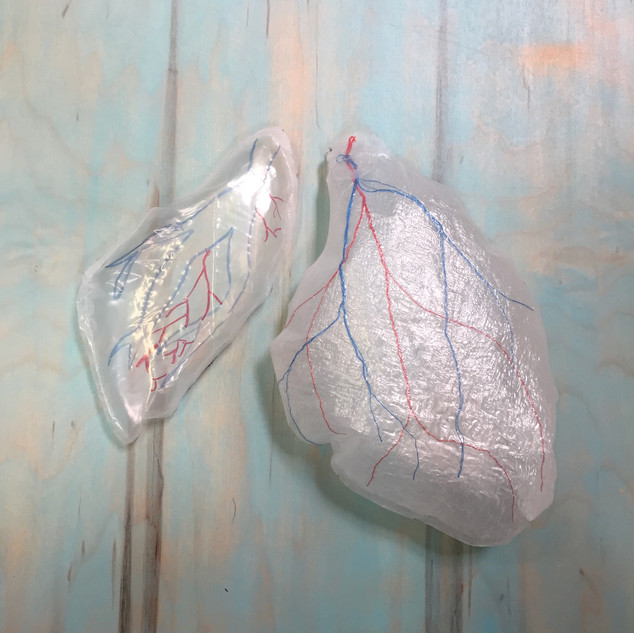 Lungs, 2016