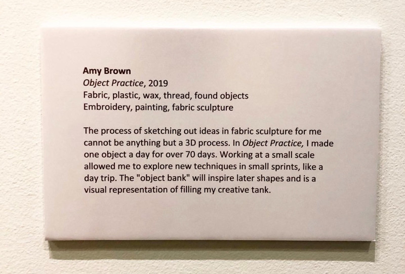 Museum label for Form & Function
