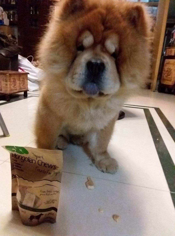 Mongolian Chews Yogurt for Dog-01