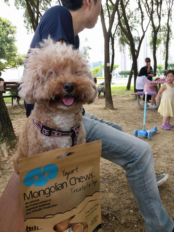 Mongolian Chews Yogurt for Dog-03