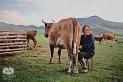 MONGOLIAN CHEWS - FARM