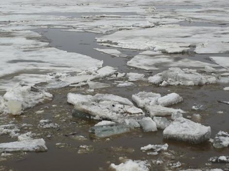 Ice drift, May 2008