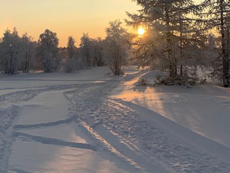 Winter 2020