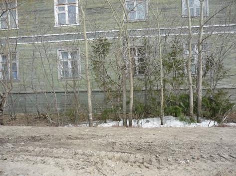 My childhood home, June 2008