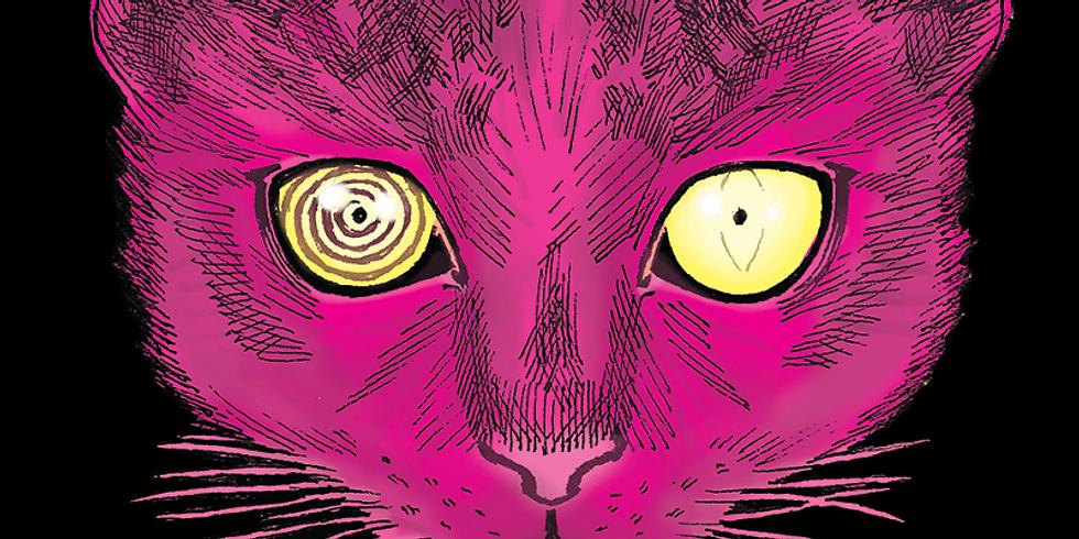 Cosmic Kitten // Quinn The Brain // Cudney