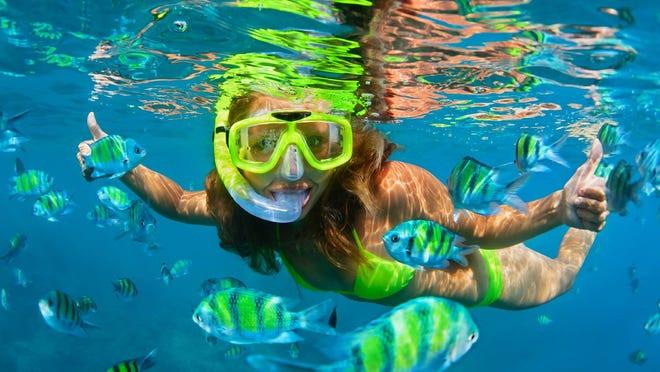snorkel4.jpg